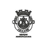 Servicios Municipalizados